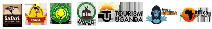 tour affiliation network