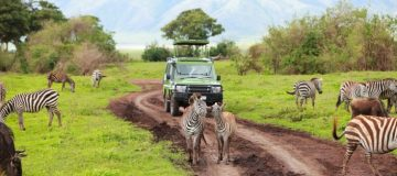Top 10 Things to do in Serengeti National Park