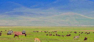 3 Days Safari to Ngorongoro Crater and Lake Manyara