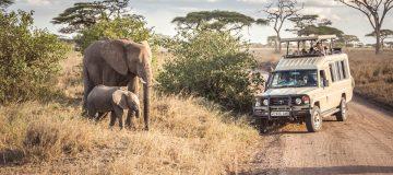 4 Days Serengeti & Ngorongoro Wildlife Safari