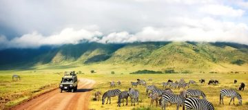 7 Days Kenya and Tanzania Wildlife Safari
