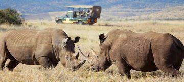 5 Days Tanzania Wildlife tour