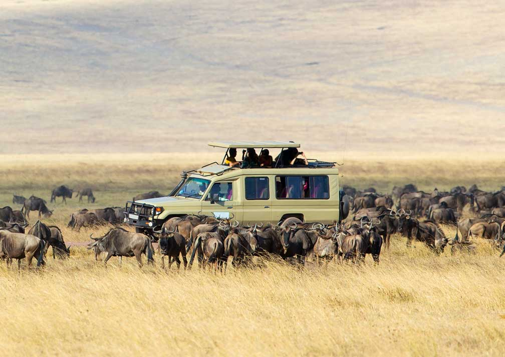 10 days Tanzania wildlife and cultural safari