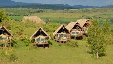 Karatu safari camp lodge